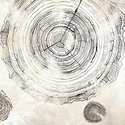 万物生长-原创定制壁画   装饰画/墙饰