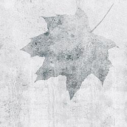 枫叶-原创定制壁画   装饰画/墙饰