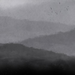 雾-原创定制壁画   装饰画/墙饰
