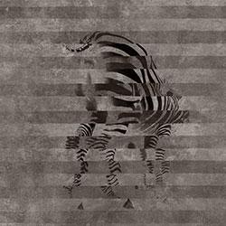 斑马-原创定制壁画   装饰画/墙饰