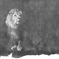 狮子-原创定制壁画   装饰画/墙饰