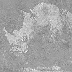犀牛-原创定制壁画   装饰画/墙饰