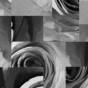 玫瑰-原创定制壁画   装饰画/墙饰