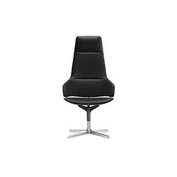 阿斯顿办公椅 吉恩马利·马索德  任务椅
