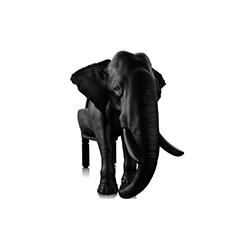 大象椅 马克西姆・里埃拉  Máximo Riera