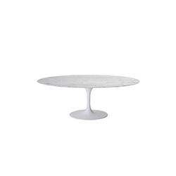 郁金香椭圆形餐桌 tulip dining table
