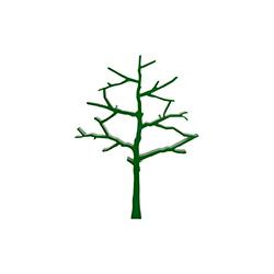 树书柜   装饰架